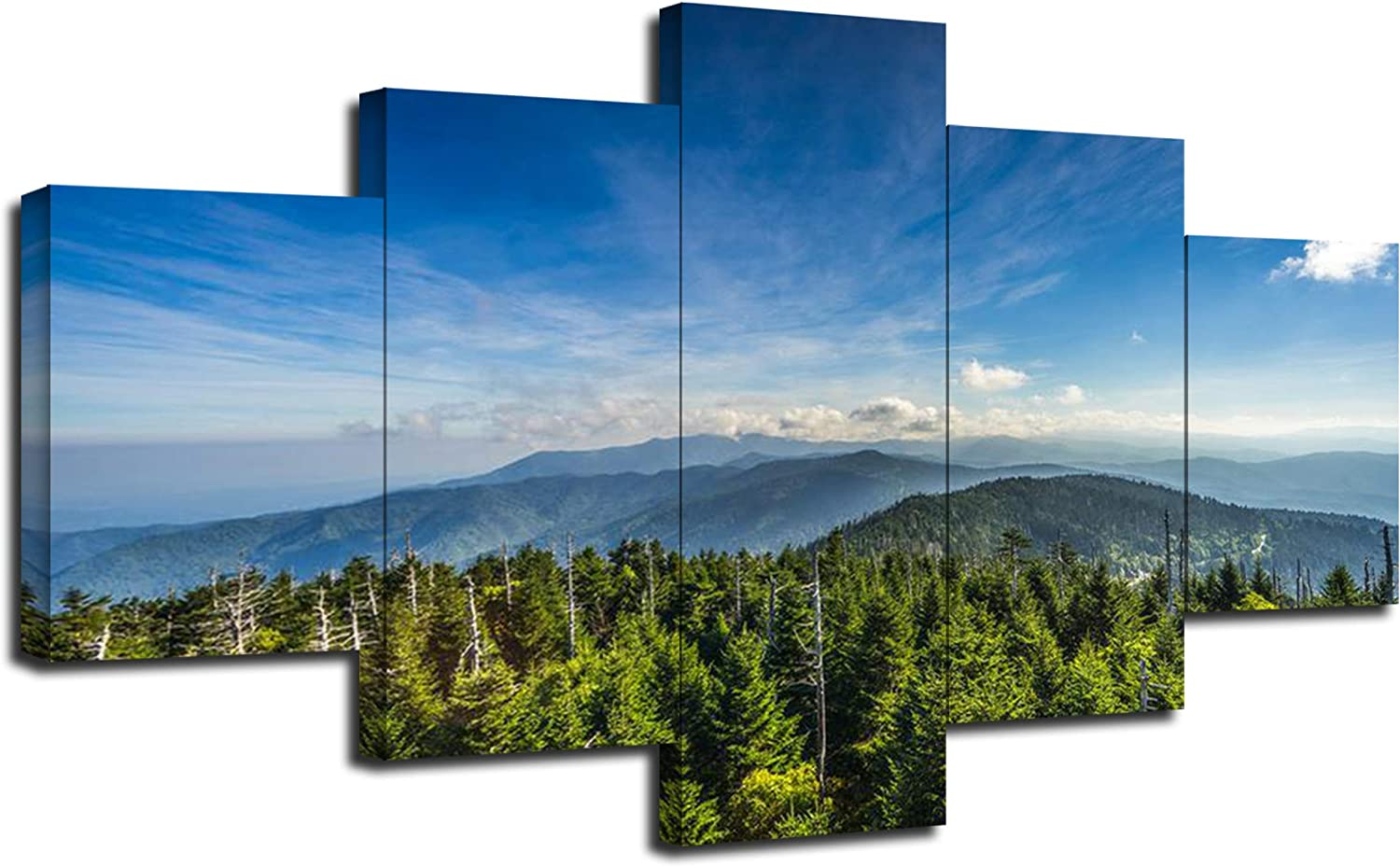 Artbrush Tower Canvas Prints Great Smoky Mountains National Park in Tennessee Wall Art Clingmans Dome USA Landscape Wall Decor Pictures 5 Piece Poster Paintings Framed Ready to Hang(60''Wx32''H)