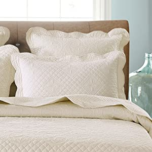 Sage Garden Luxury Pure Cotton Quilted Standard Pillow Sham 20'' x 26'', Ivory