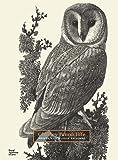 C F Tunnicliffe Prints: A Catalogue Raisonné
