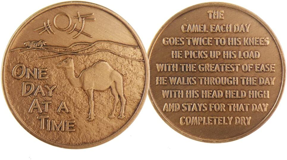 Bulk Lot of 25 Camel Desert One Day At A Time Medallions Bronze Sobriety Chips