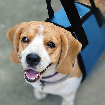 Arnés de apoyo para perro - Elevación K9 con asa para lesiones ...