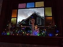 My favorite Fairy Lights!