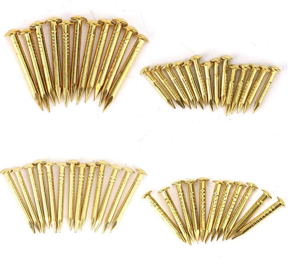 HEEPDD 100Pcs Brass Escutcheon Tacks, Round Head Brass Brad Nail Hardware Nail Assortment Kit Furniture Hinge Hardware Accessories 10mm/15mm/18mm/22mm(10mm Length)