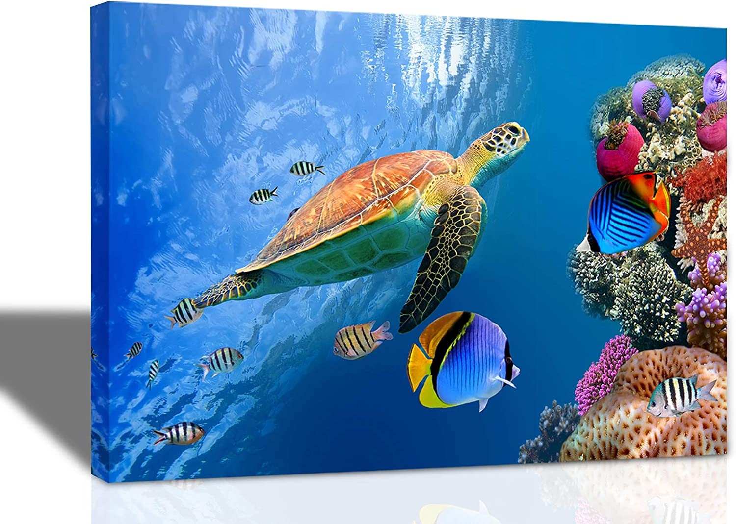 Sea Turtle Wall Art Bathroom Decor Canvas Prints Modern Blue Ocean Colorful Fish Coral Pictures for Bedroom Living Room Baby Room Wall Decor Size 12x16 Inch Ready to Hang