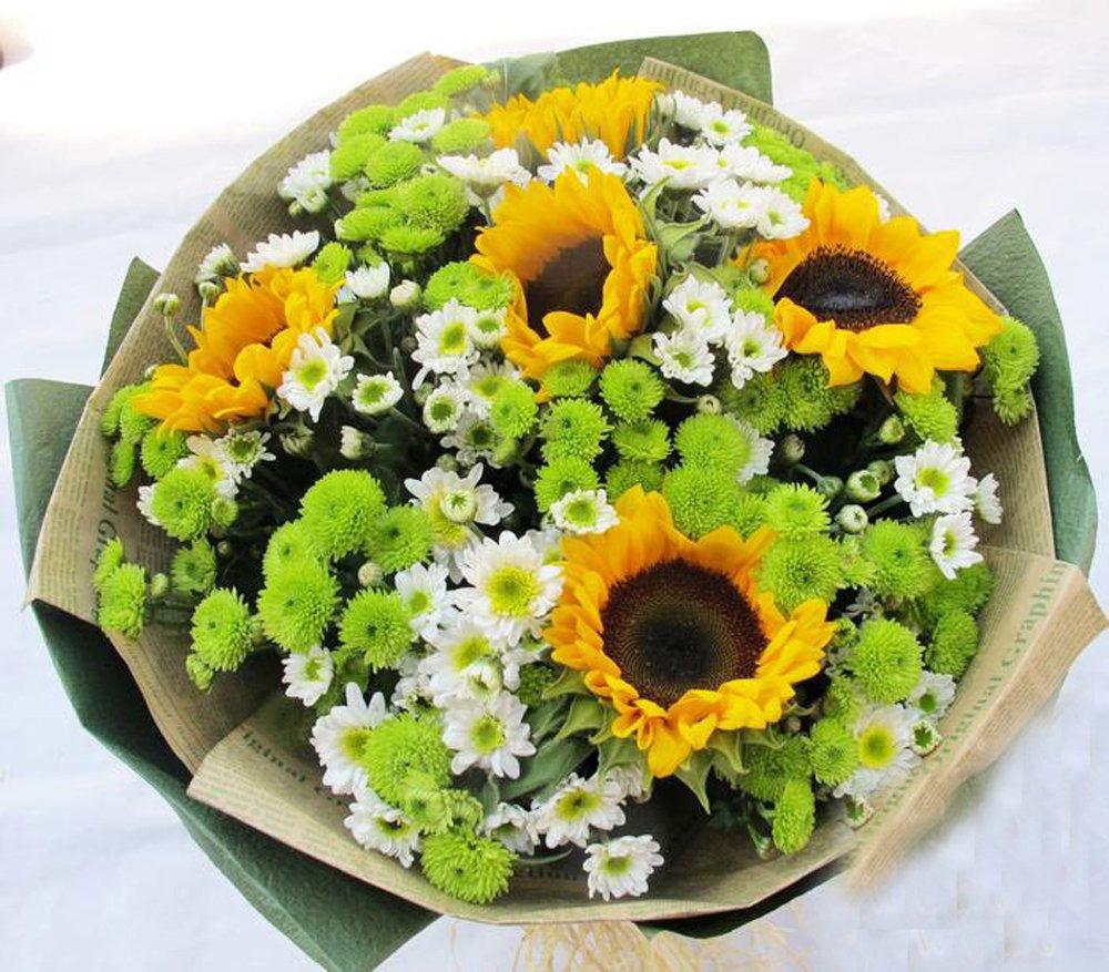 qq农场向日葵几季_向日葵花束牌子哪个好 向日葵花束重庆怎么样