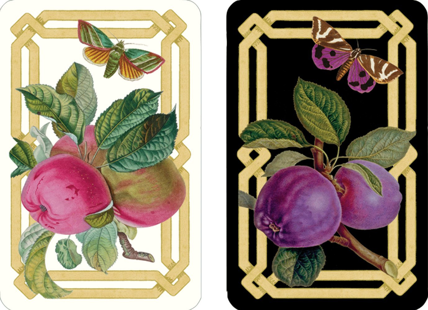 Decoupage Garden Caspari Large Jumbo Print Double Deck of Bridge Playing Cards For Impaired Vision