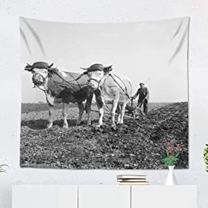 Suklly Tapestry Wall Hanging Polyester Plow Man Plowing Field Ox Drawn Plough 1930S Agriculture Home Decor Living Room Bedroom Dorm 50 x 60 inches Picnic Mat Beach Towel