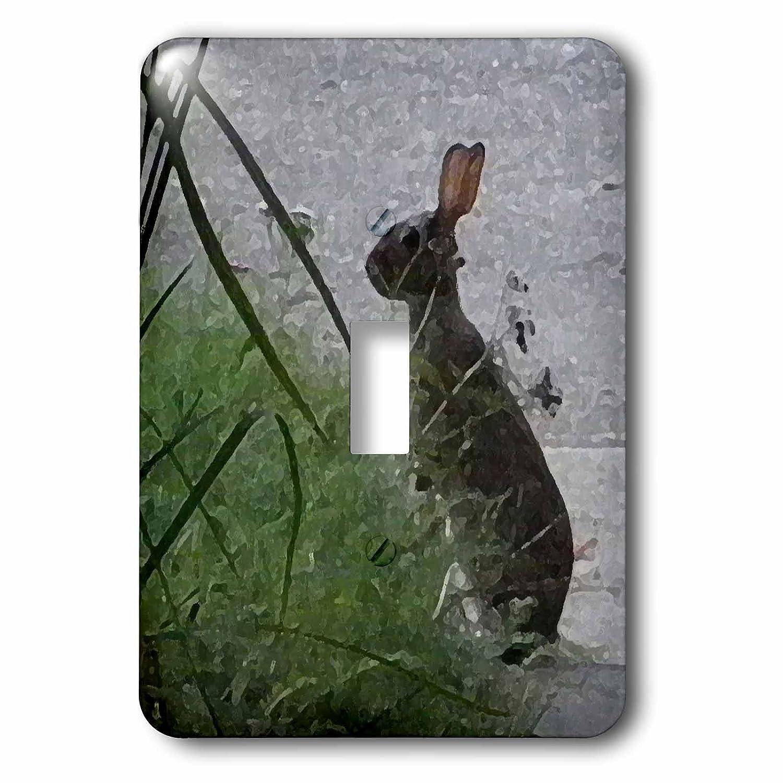 即日発送 3dローズLSP_ Rabbit 200104_ 200104_ 1キュートブラウンBunny Rabbit photography-single切り替えスイッチ B00NVY4SHS, 燕市:738bec64 --- svecha37.ru