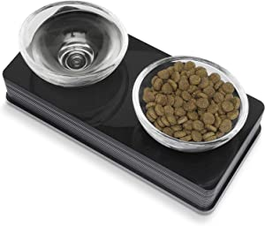Catit Style 2-Bowl Glass Diner Set for Pets