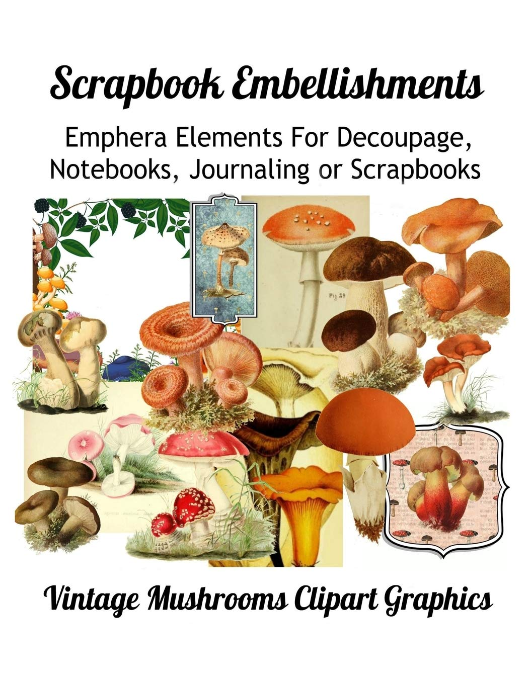 Scrapbook Embellishments Emphera Elements For Decoupage Notebooks Journaling Or Scrapbooks Vintage Mushroom Clipart Graphics Media Paper Moon 9781088463574 Amazon Com Books Affordable and search from millions of royalty free images, photos and vectors. scrapbook embellishments emphera