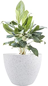 LA JOLIE MUSE Large Planter Pot Indoor Outdoor - 14.2 Inch Tree Planter Flower Pot, Planters Container with Drain Holes