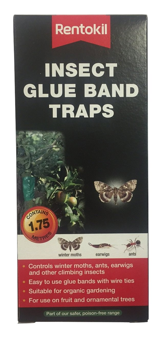 Rentokil FIG01 Insect Glue Band Traps - Black