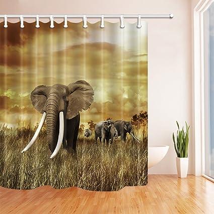 HiSoho Safari African Wildlife Shower Curtains Elephant Family Walking At Sunset Mildew Resistant Polyester