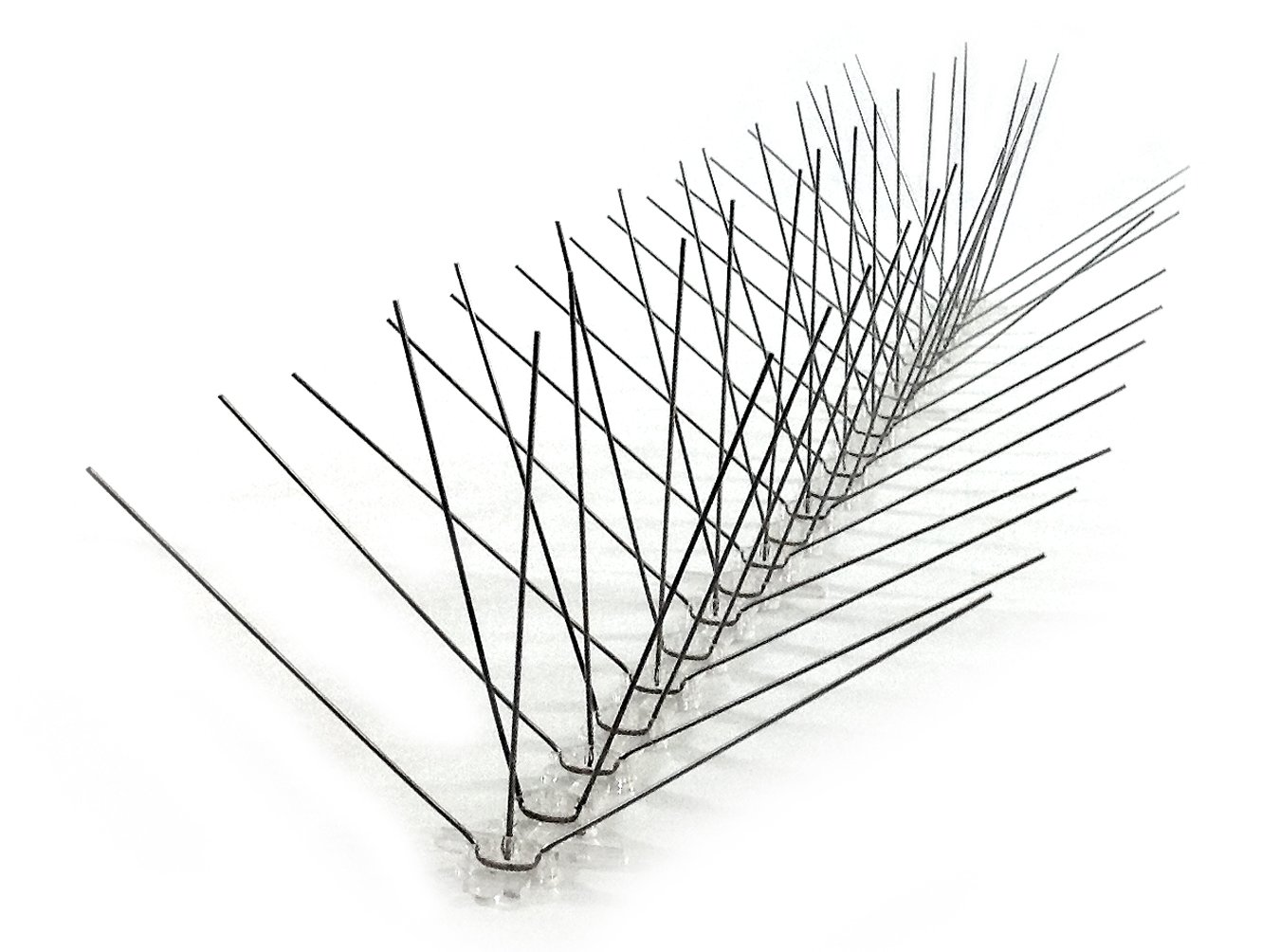 Amazon.com: Bird-X Extra Wide Stainless Steel Bird Spikes, Covers 10 ...