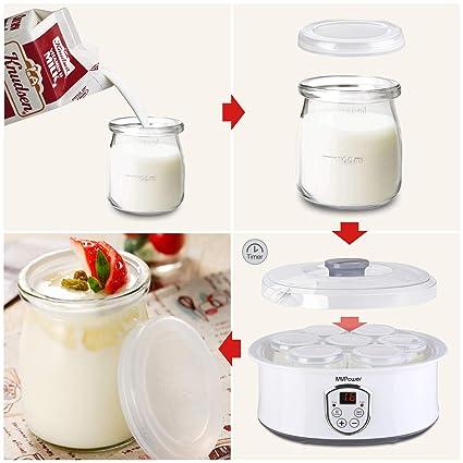 recetas yogurtera