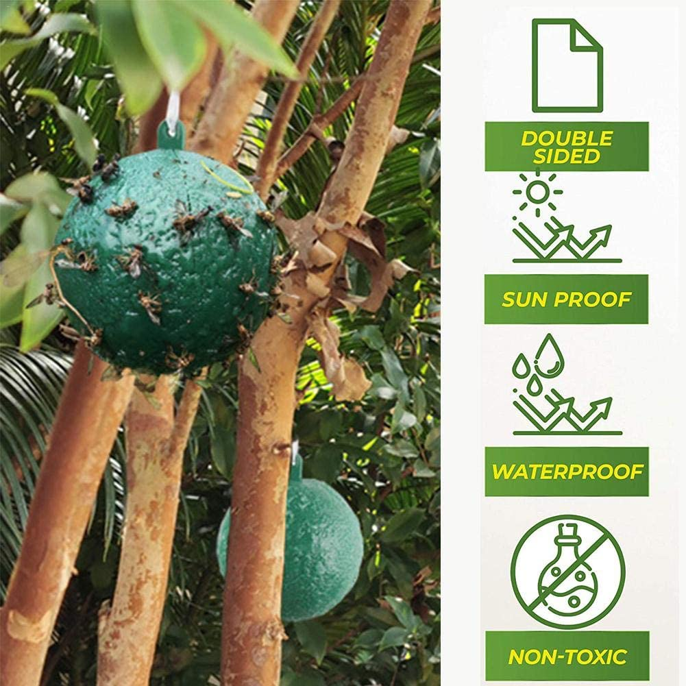Green Yellow Etc Very Suitable For Flower Pots//Balconies//Yards//Vegetable Greenhouses//Orchards//Gardens//Nurseries sanguiner Fruit Fly Trap,Fly Fruit Fly Trap 360 /° Sticky Fly Ball Trap Ball Diame