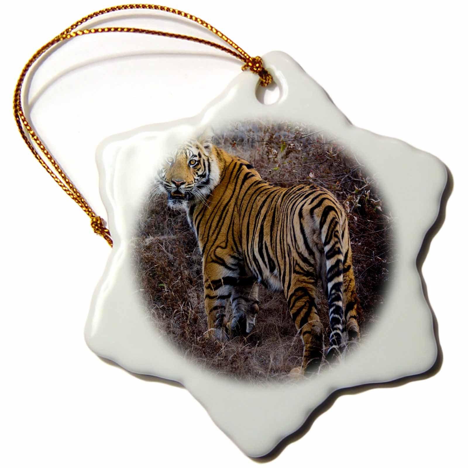 3dRose Danita Delimont - Big Cats - Tiger, Bandhavgarh National Park, India - 3 inch Snowflake Porcelain Ornament (orn_276772_1)