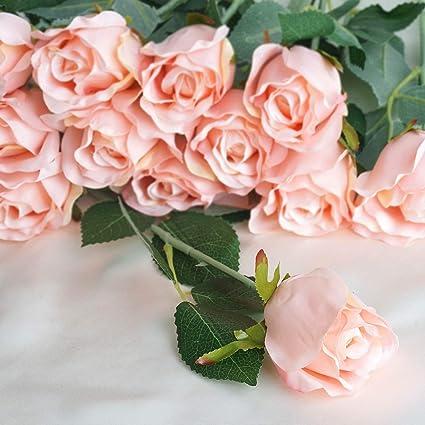 Amazon balsacircle 24 blush silk single stems roses balsacircle 24 blush silk single stems roses artificial flowers wedding party centerpieces arrangements bouquets decorations mightylinksfo