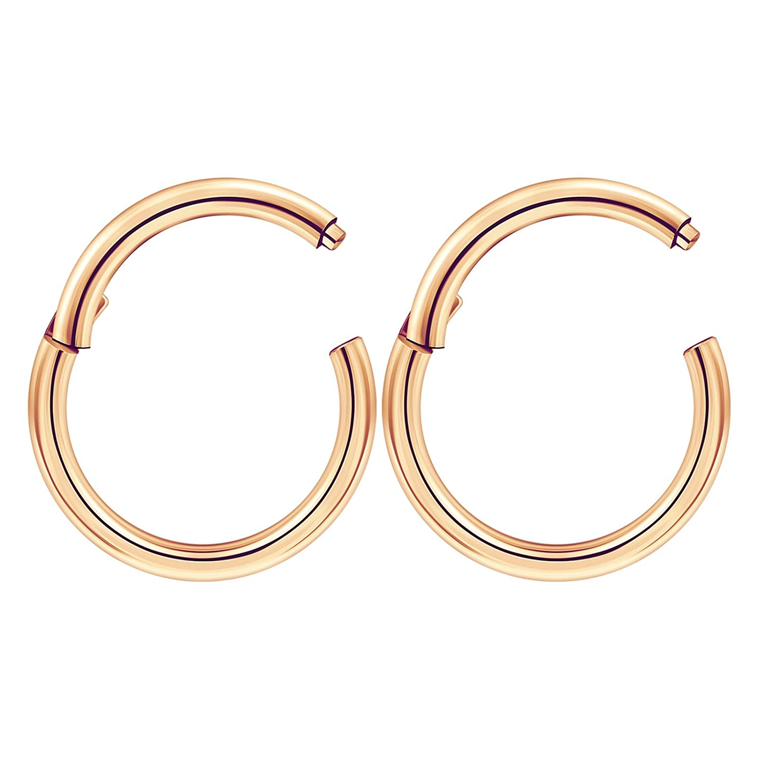 42bf21197 Amazon.com: 2pcs Stainless Steel Rose PVD Plated Hinged Segment Ring Hoop  Septum 14 Gauge 3/8 10mm Earrings Tragus Piercing Jewelry 3461: Jewelry