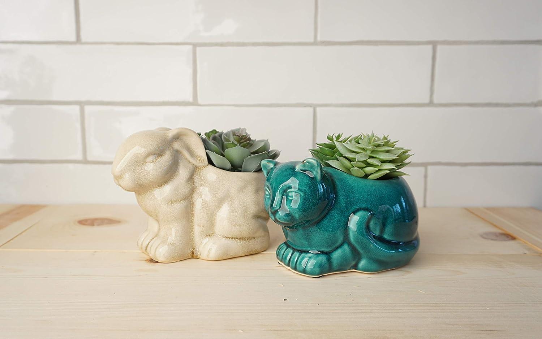 Set of 2 Artificial Succulent Plants in Cat Bunny Ceramic Pot Fake Plants for Bathroom House Home Decor Faux Decorations Arrangement