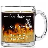 Funny Glass Coffee Mug Go Away 13 oz - Unique Birthday Gift For Women & Men, Her or Him - Best Christmas Present Idea For Mom, Dad, Wife, Husband, Girlfriend, Boyfriend