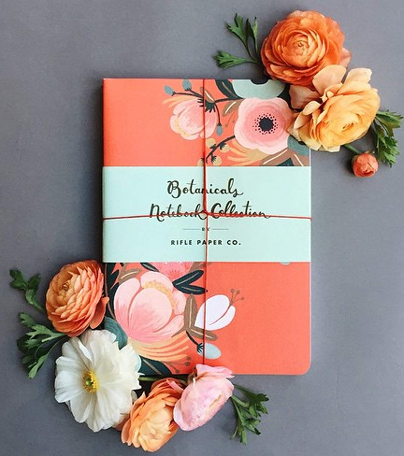 Botanicals Notebook Collection: Amazon.es: Rifle Paper Co ...