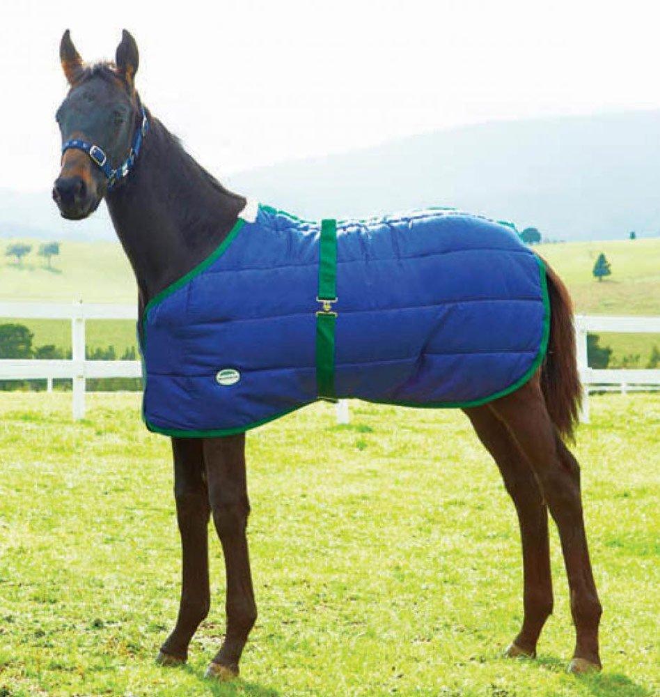 Weatherbeeta Newborn Foal Blanket Weatherbeeta USA Inc.