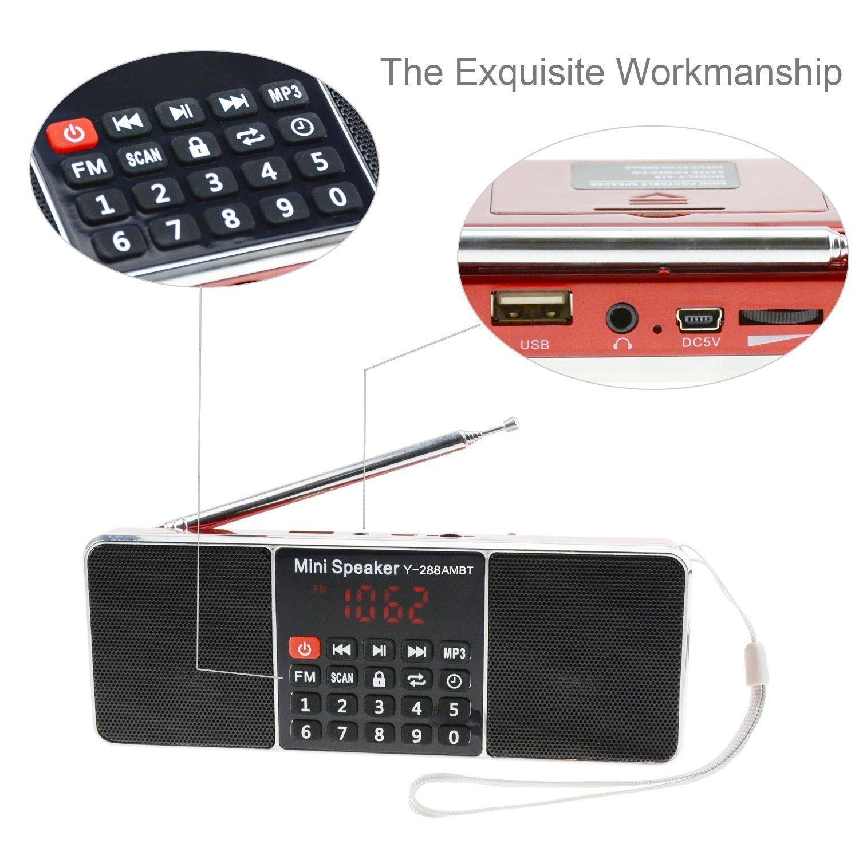 Easycare Portable Mini AM FM Radio Clear Speaker Music Player (L288-AMBT, Red)