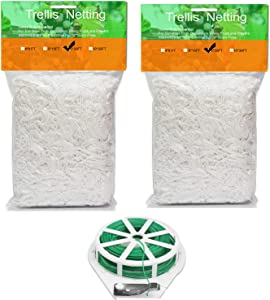 ICANZUO Plant Trellis Netting 5x30ft Trellis Net Heavy-Duty Polyester Plant Support Vine Climbing Hydroponics 2 Pack with/Garden Twine