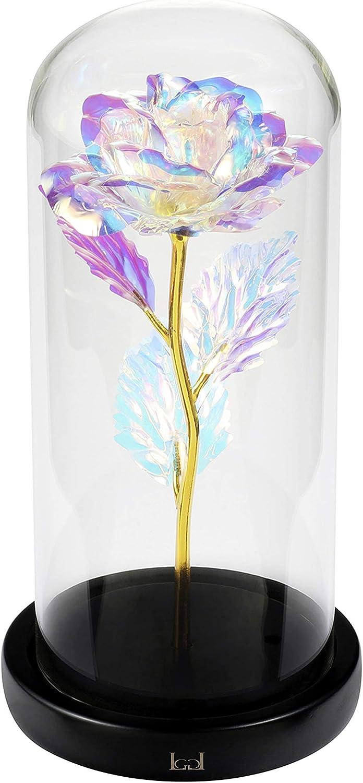 LCCL La Bella y la Bestia Rose Kit Completo para la decoración, Boda, Fiesta, cumpleaños, Aniversario (Hoja de Oro Colorido Rosa)