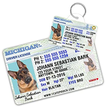 Personalized Dogs - Cats Pet com Wallet Pets Tag Driver Cat Id Custom Dog For Card Supplies Amazon Tags License And Michigan