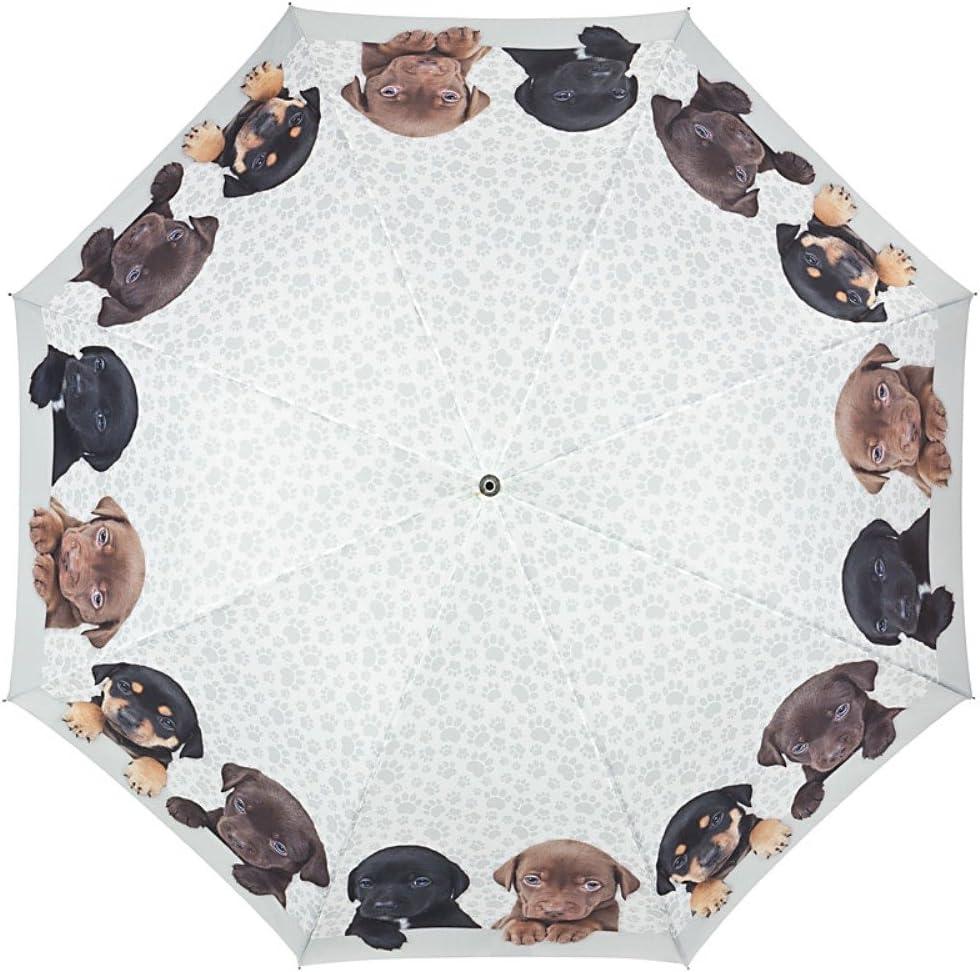 VON LILIENFELD/® Parapluie Automatique Femme Motif Chien Quatuor de Chiots