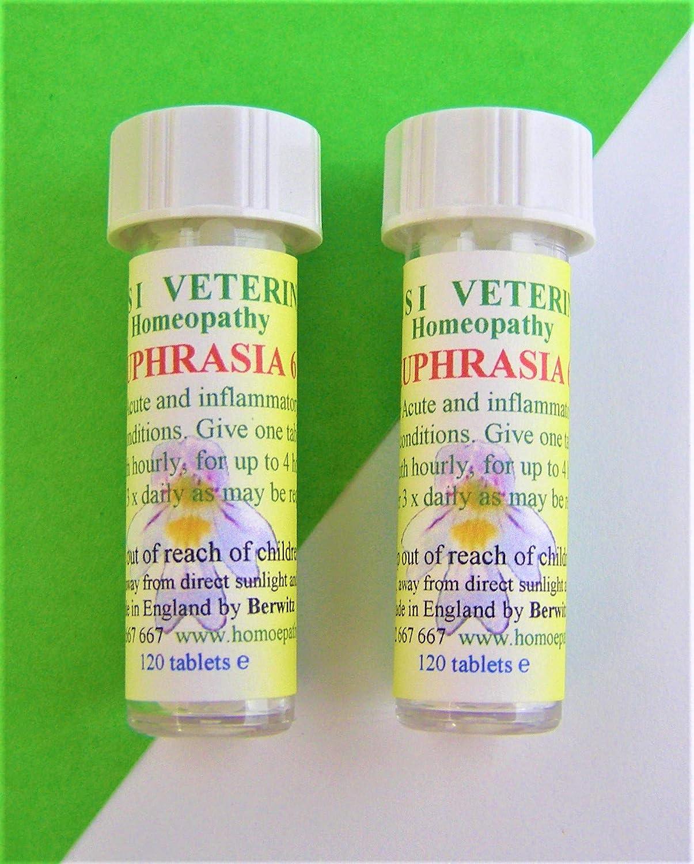 ASSISI VETERINARY Euphrasia 6c homeopatía remedio Perros Gatos Caballos Animales pequeños pájaros 240 pílulas