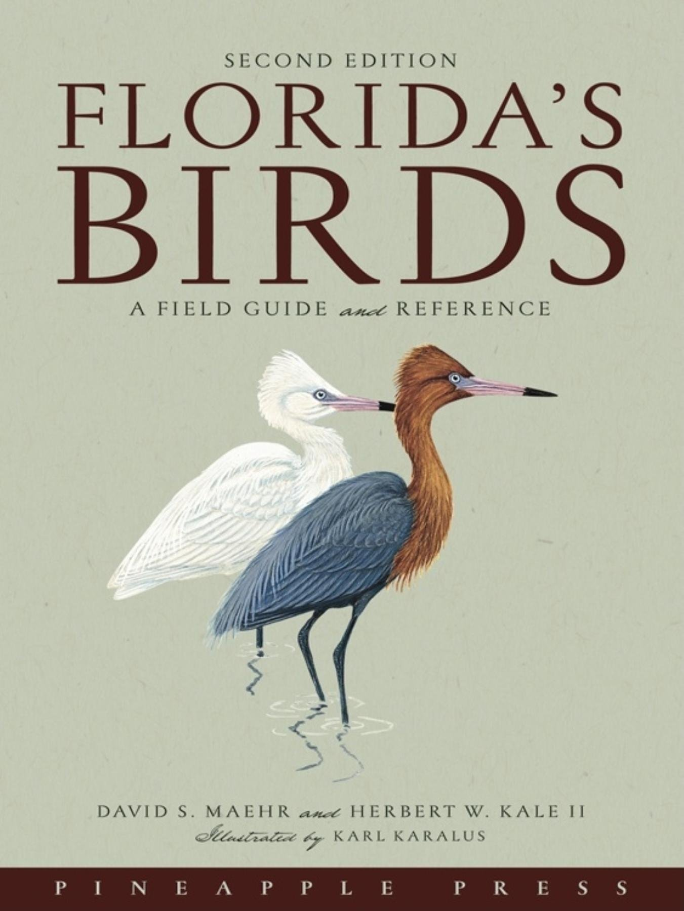 Florida's Birds: A Field Guide and Reference, Maehr, David S.; Kale, Herbert W.