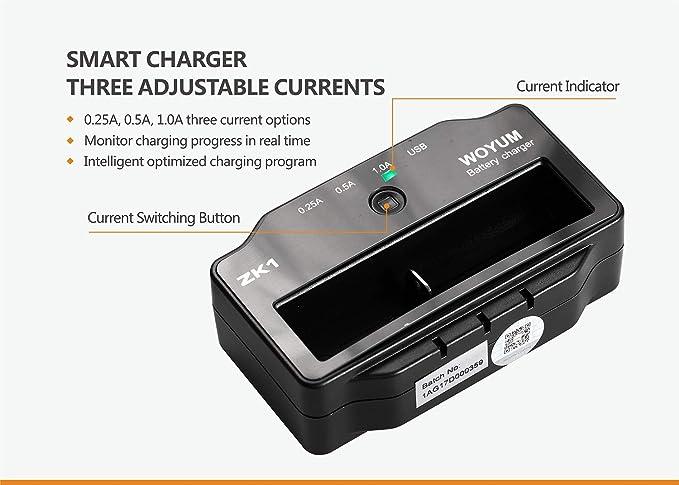 Amazon.com: Yeeyum Smart LCD USB Li-ion cargador de batería ...