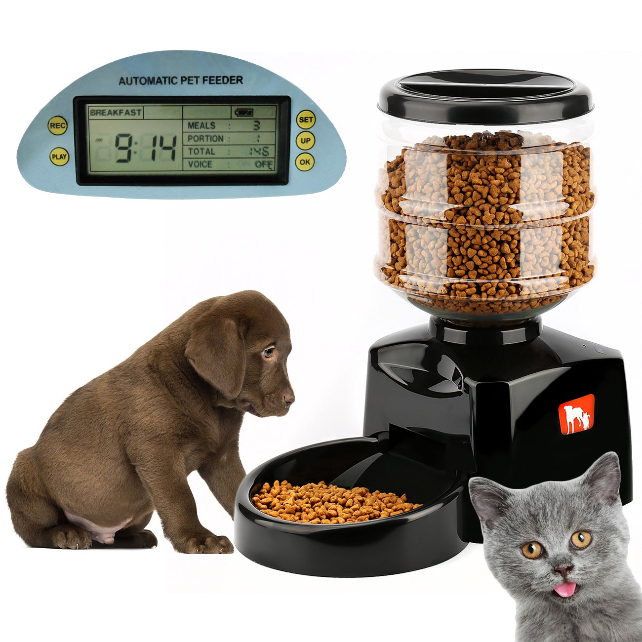 feeder oxgord food watch dog dispenser dry large automatic pet review timed timer programmable cat