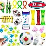 Fidget Toys 32 Pack Bundle Sensory Toys
