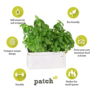 Patch Planters 9970 Compact Self Watering Herb and Greens Planter, Original White