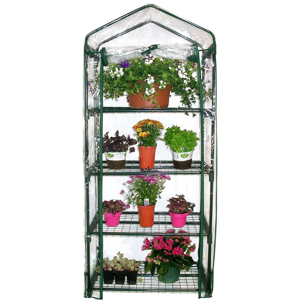 4 Tier Mini Greenhouse Portable Deck Patio Greenhouse with Shelves by Four Tier