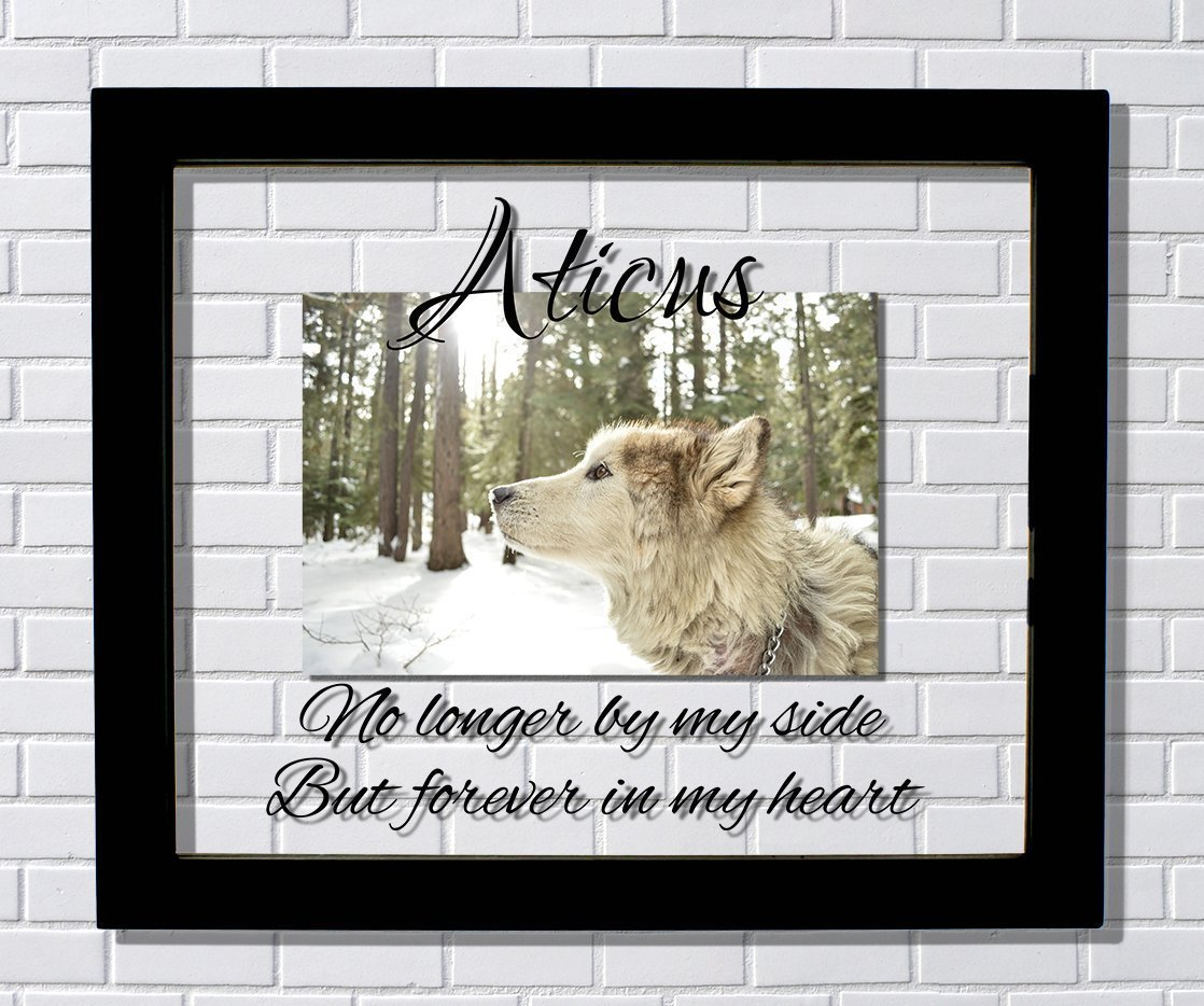 Pet Memorial Frame - Floating Frame - No longer by my side But forever in my heart - Dog Cat Bird Animal Pet Loss Remembrance Bereavement