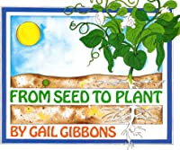 From Seed To