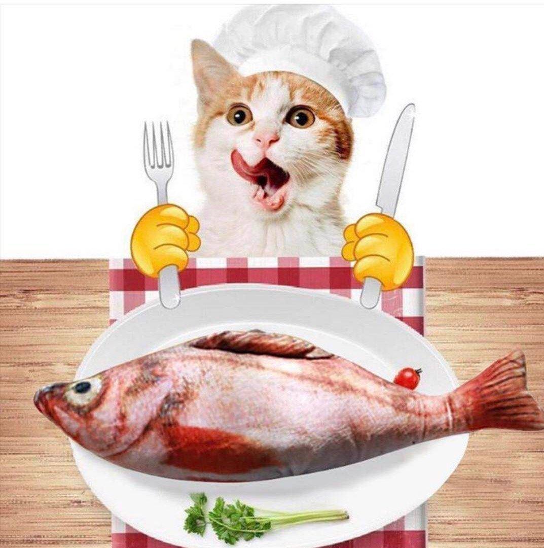 LaifugRedFishCatToywithCatnip