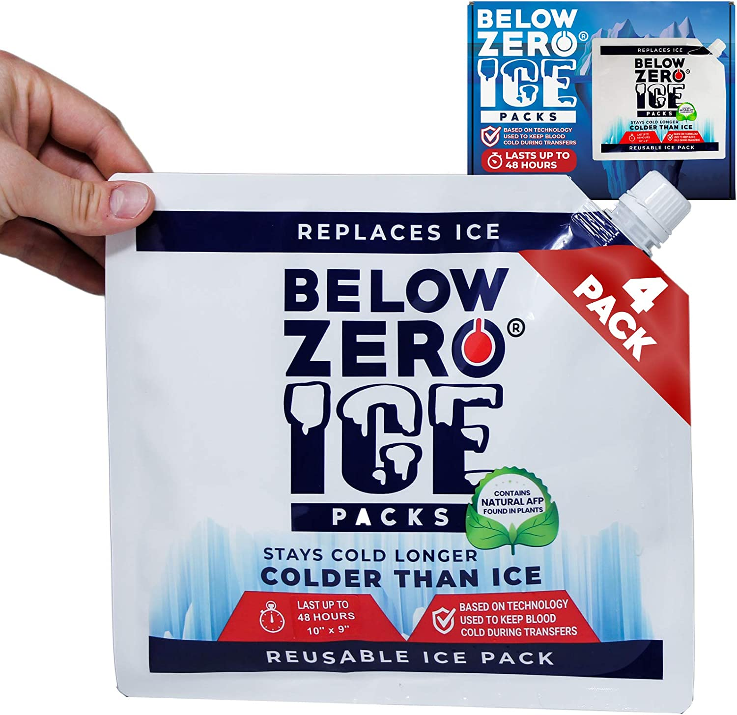 Below Zero Colder Than Ice Freeze Packs - 10x9in Absorbent Polymer Ice Pack for Lunch Box, Coolers, Fits Large and Small Insulated Coolers - No Ice Needed - Lasts Upto 48 Hrs