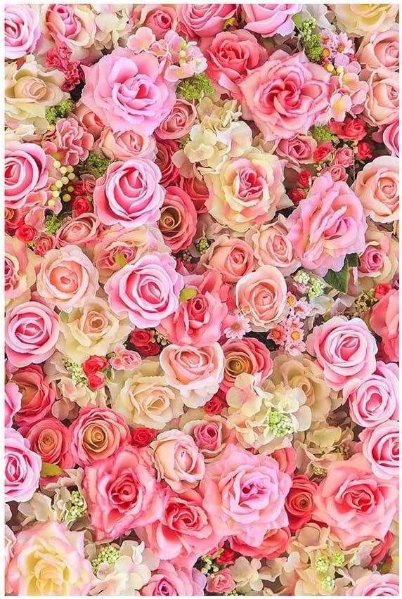 LUCOG Saint Valentin amour coeur photographie toile de fond vinyle photo fond Prop cadeau D/égagement Vente