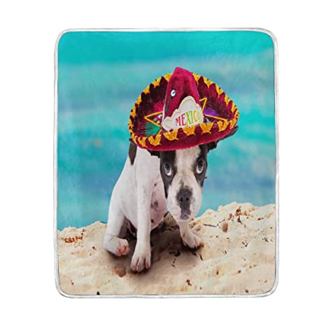 ALAZA decoración del hogar azul cielo – francés bulldog cachorro perro manta mantas para cama sofá