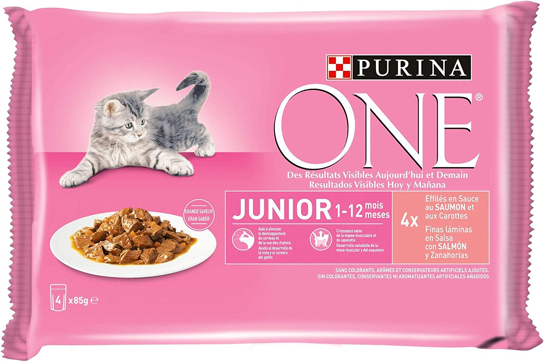 Purina ONE comida húmeda para gato, gatito, junior, gatos hasta 1 ...