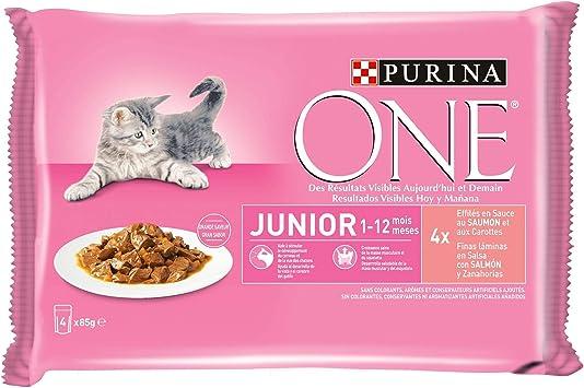 Purina ONE comida húmeda para gato, gatito, junior, gatos hasta 1 año filetes en salsa con salmón 12 x [4 x 85 g]: Amazon.es: Productos para mascotas