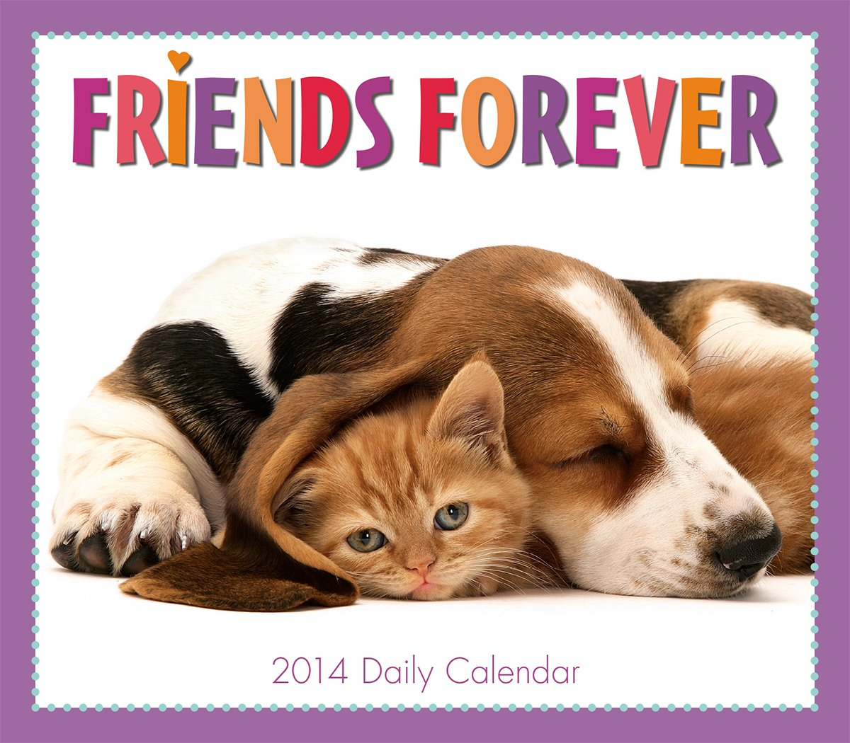 Friends Forever 2014 Boxed/Daily (calendar)