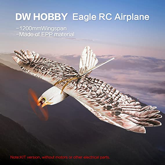 Goolsky DW HOBBY Biomimetic Eagle EPP Mini Slow Flyer 1200mm Wingspan RC KIT de avión: Amazon.es: Juguetes y juegos