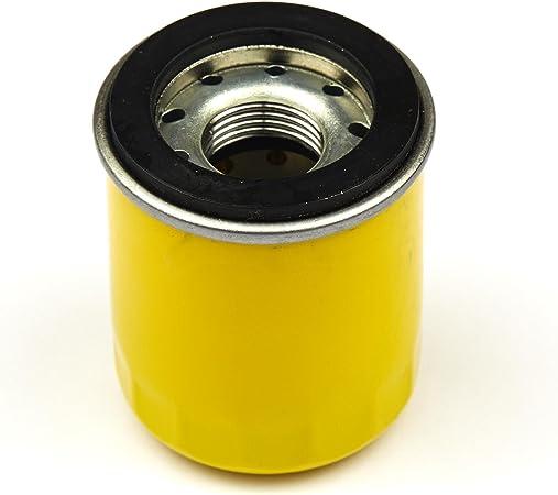 Amazon.com: Briggs & Stratton 795990 Filtro de aceite ...